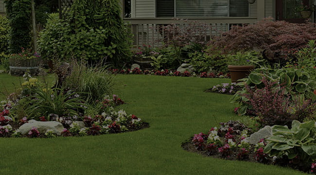 Greensboro Landscape Design