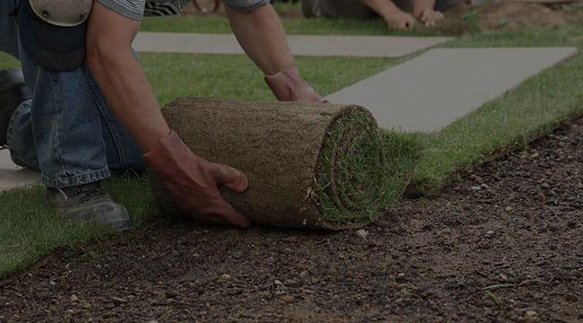Greensboro Lawn Care